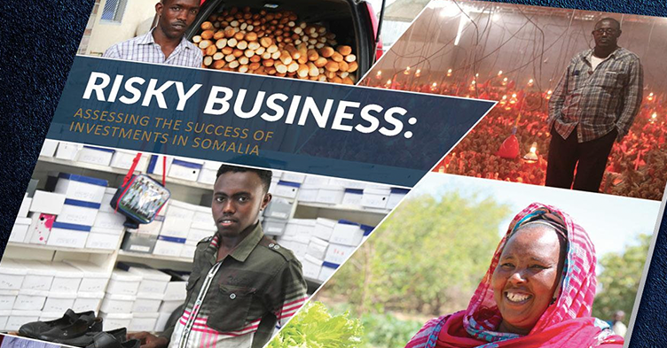 business investment in somalia