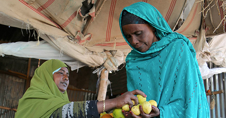 investing in women business owners in somalia